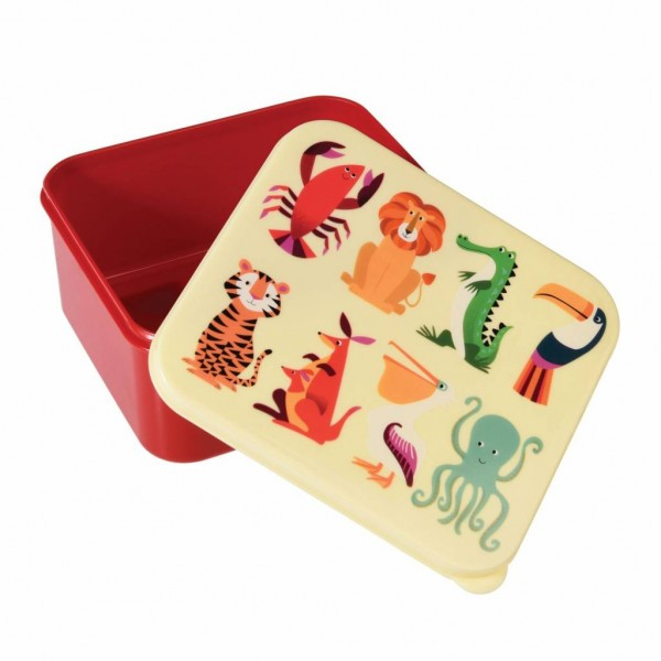 Rex Brotdose Lunchbox Wilde Tiere